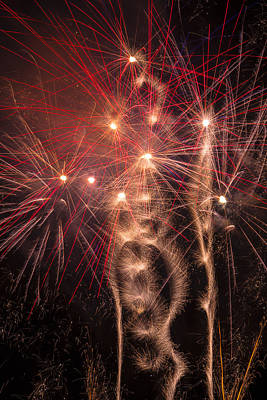 Dazzling Fireworks Art Print by Garry Gay