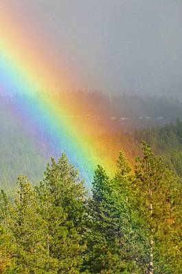 Photograph - Dazzling Rainbow by Will Borden