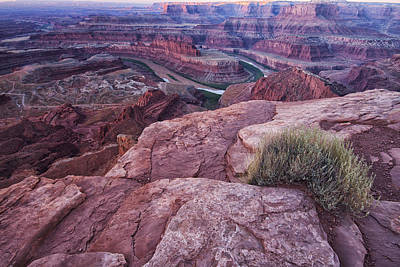 Dead Horse Point Print by Mark Kiver