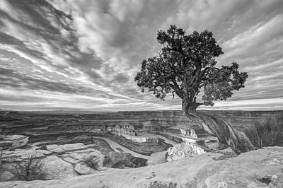 Photograph - Dead Horse Point Sunrise In Black And White by Dustin  LeFevre