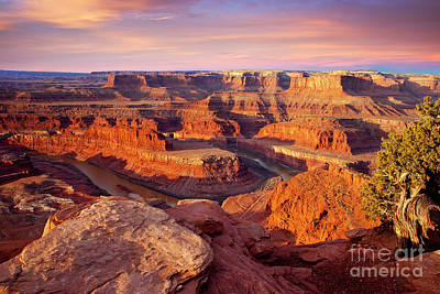 Photograph - Dead Horse Point View by Brian Jannsen