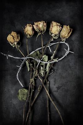 Dead Roses Art Print by Joana Kruse