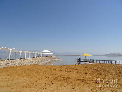 Photograph - Dead Sea 1 by Karen Jane Jones