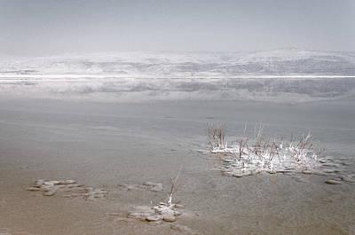 Dead Sea Original