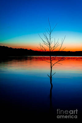 Missouri Photograph - Dead Tree Beauty At Sunset Over Table Rock Lake by JC Kirk