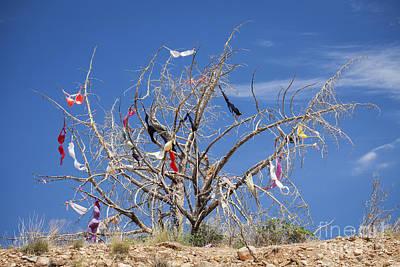 Dead Tree Covered In Womens Bras Art Print