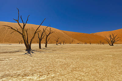 Sossusvlei Area Photograph - Dead Trees In Naukluft Park Namib Desert by Paul W Sharpe Aka Wizard of Wonders