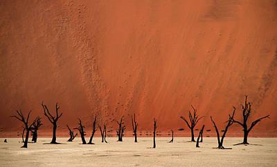 Sand Dunes Photograph - Deadvlei by Hans-wolfgang Hawerkamp