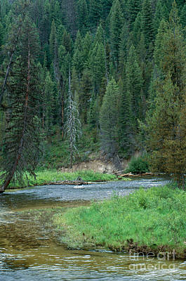 Deadwood River Art Print by William H. Mullins