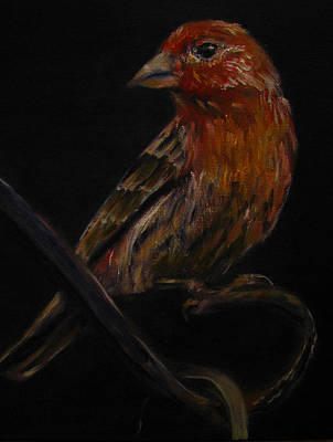 Painting - Deans Bird by Sherry Robinson