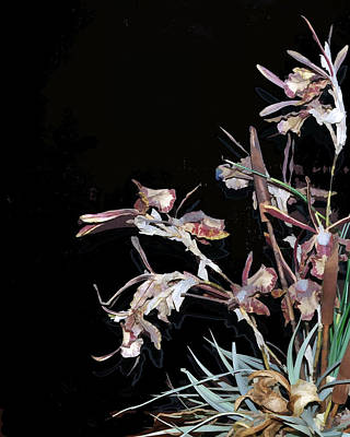 Death Of An Orchid  Art Print