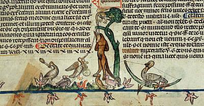 Death Of Reynard The Fox Art Print by British Library
