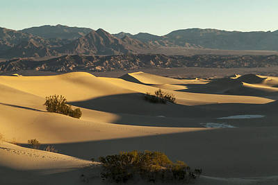 Photograph - Death Valley Dunes by Kim Swanson