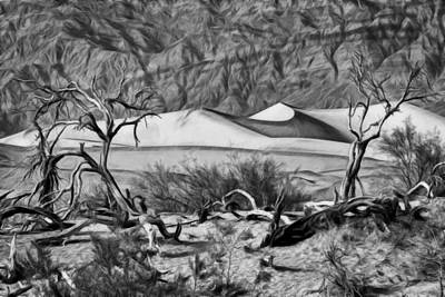 Photograph - Death Valley Sand Dune by Wes and Dotty Weber