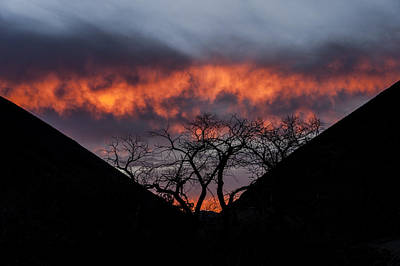 Photograph - Death Valley Sunset by Cat Connor