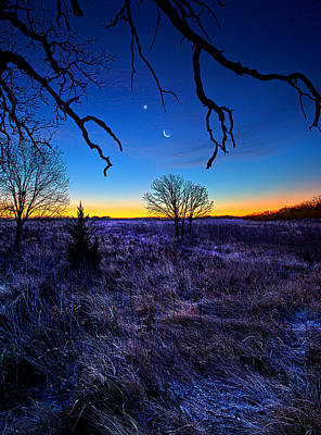 National Geographic Photograph - December Blues by Phil Koch