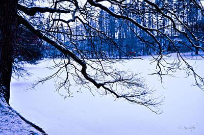 Photograph - December by Cheri Randolph
