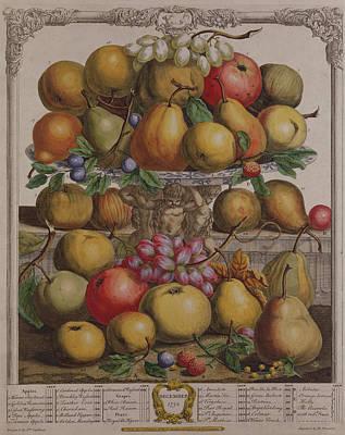 December, From Twelve Months Of Fruits, By Robert Furber C.1674-1756 Engraved By Henry Fletcher Art Print