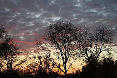 Art Print featuring the photograph December Sunset by Ramona Whiteaker