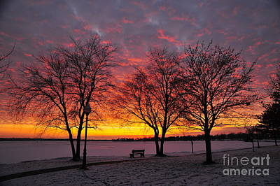 Art Print featuring the photograph December Sunset by Terri Gostola