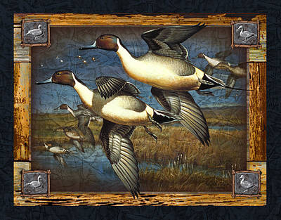 Duck Wall Art - Painting - Deco Pintail Ducks by JQ Licensing