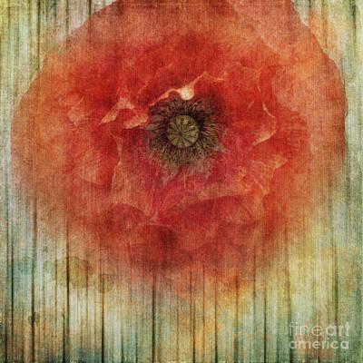 Decor Poppy Blossom Print by Priska Wettstein