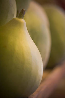 Cantaloupe Photograph - Decorative Gourd by Maria Heyens