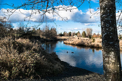 Photograph - Decorsey Park by Ron Roberts