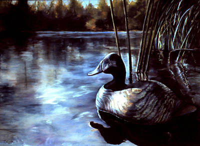 Decoy At Tealwood Art Print by Pattie Wall