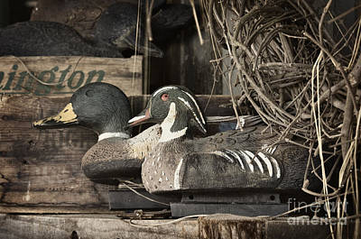 Photograph - Decoys - D007338-a by Daniel Dempster