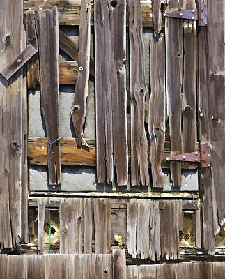 Photograph - Decrepit Barn Door by David Letts