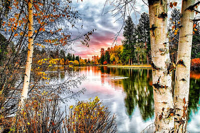John Williams Photograph - Deep Autumn by John Williams