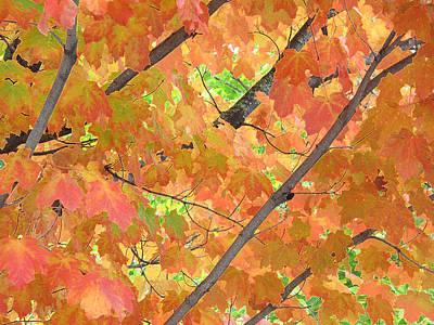 Deep Autumn Wcae  Art Print by Lyle Crump