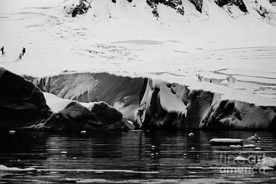 Fournier Photograph - deep blue line fissure crack in snow covered ice shelf glacier falling into the sea at Fournier Bay  by Joe Fox