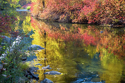 Deep Fall Colors, Wenatchee River Art Print