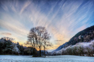 Photograph - Deep Frost by Beverly Cash