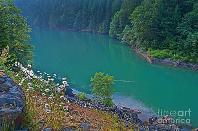 Photograph - Deep Green River Near Ross Lake Washington In Forest by Valerie Garner