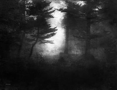 Deep In The Dark Woods Art Print by Theresa Tahara