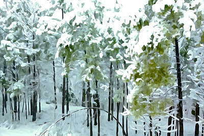 Photograph - Deep In The Woods - The Textures Of Winter by Charlie and Norma Brock