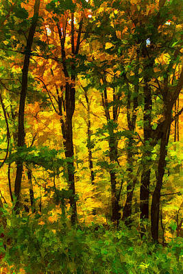 Painting - Deep In The Woods Of The Great Smoky Mountains National Park by John Haldane