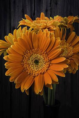 Gerbera Photograph - Deep Orange Gerbera Daisy by Garry Gay