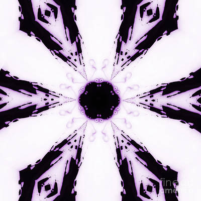 Kaleidoscope Photograph - Deep Purple by Cindi Ressler