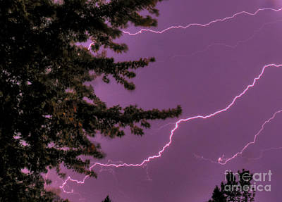 Photograph - Deep Purple Lightning Strokes by Deborah Smolinske