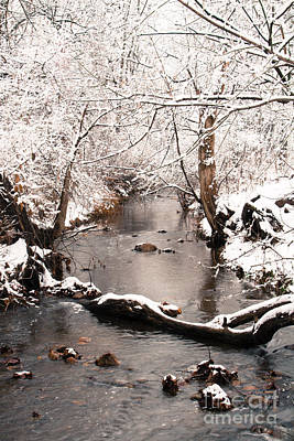 Photograph - Deep Run In Winter 2 by Chris Scroggins