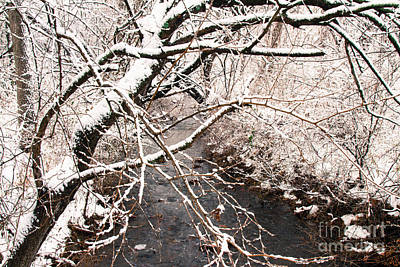 Photograph - Deep Run In Winter 3 by Chris Scroggins