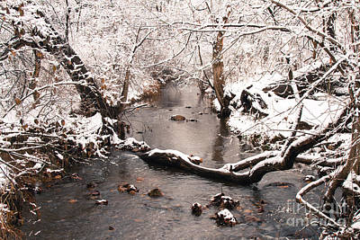 Photograph - Deep Run In Winter by Chris Scroggins