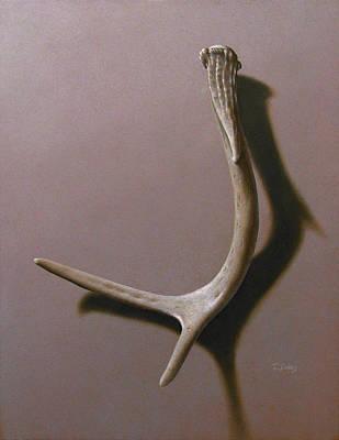 Deer Antler Art Print by Timothy Jones