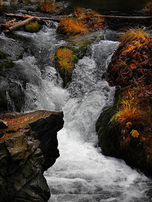 Photograph - Deer Creek Cascade by Frank Wilson