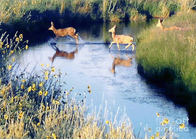 Photograph - Deer Crossing by Cristophers Dream Artistry