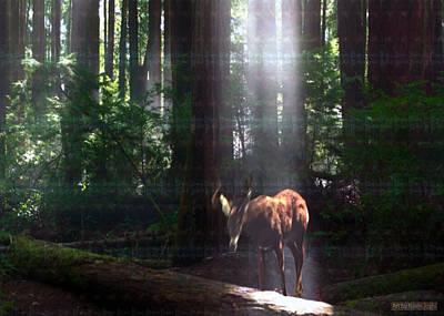 Combination Mixed Media - Deer Enjoying Morning Sunlight Between Safety Of Tall Trees by Navin Joshi